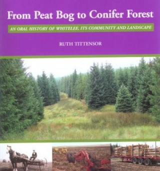 From Peat Bog to Conifer Forest